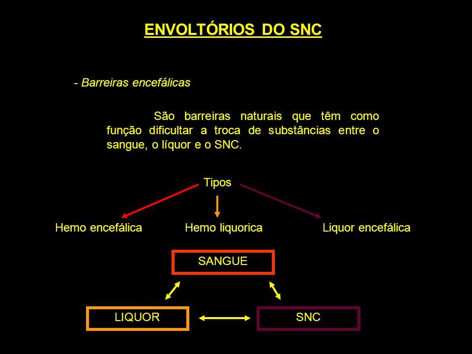 - Barreiras encefálicas