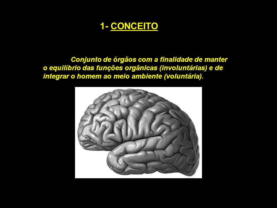 1- CONCEITO