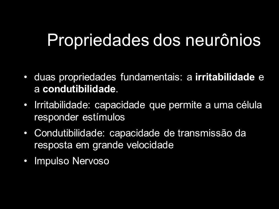Propriedades dos neurônios