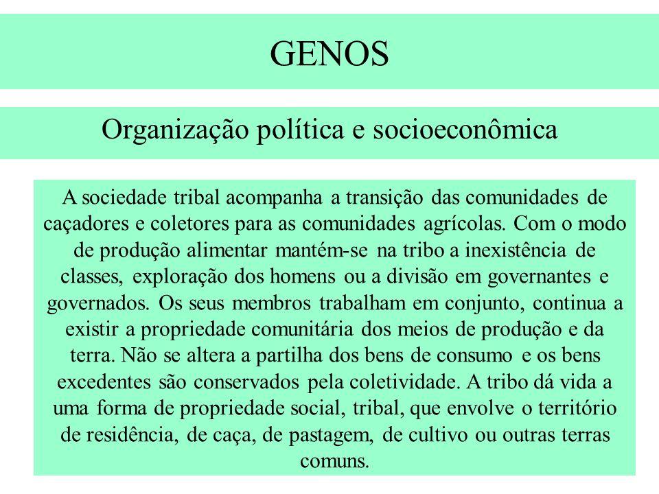 Organização política e socioeconômica