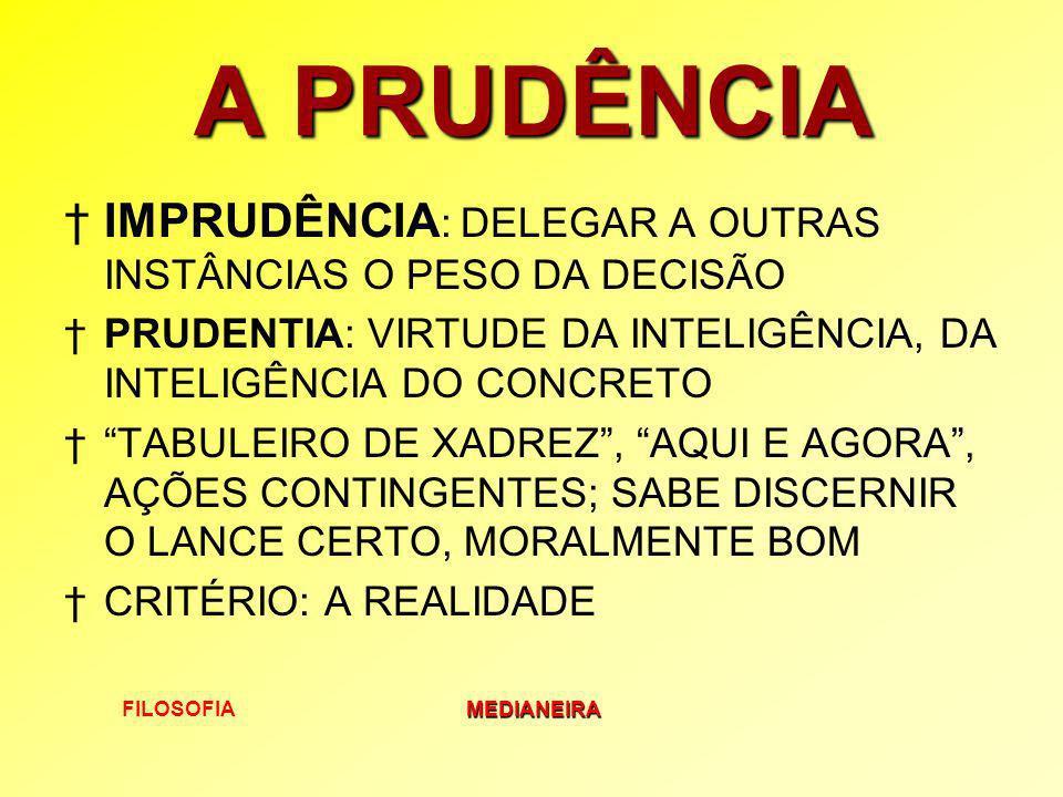 A PRUDÊNCIA IMPRUDÊNCIA: DELEGAR A OUTRAS INSTÂNCIAS O PESO DA DECISÃO