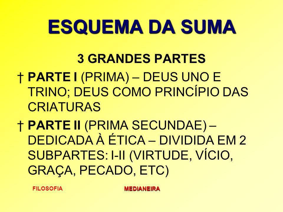 ESQUEMA DA SUMA 3 GRANDES PARTES