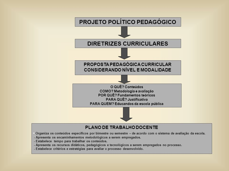 PROJETO POLÍTICO PEDAGÓGICO DIRETRIZES CURRICULARES