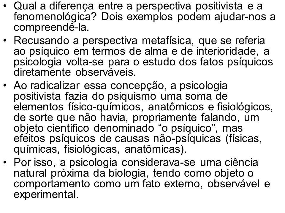 Qual a diferença entre a perspectiva positivista e a fenomenológica