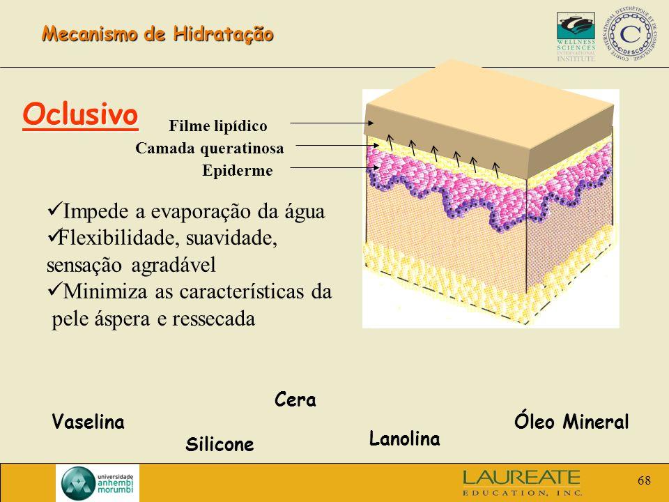Mecanismo de Hidratação