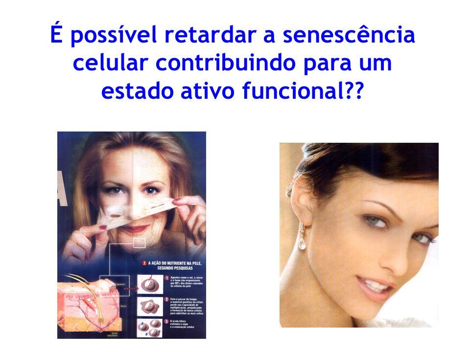 É possível retardar a senescência celular contribuindo para um estado ativo funcional
