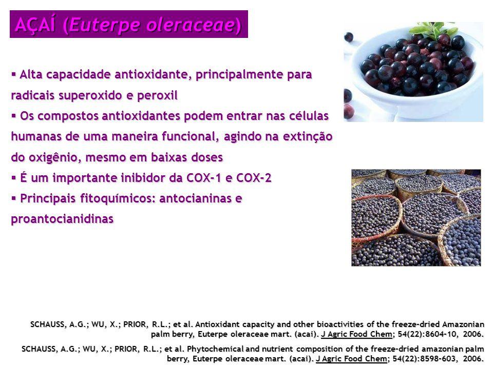 AÇAÍ (Euterpe oleraceae)