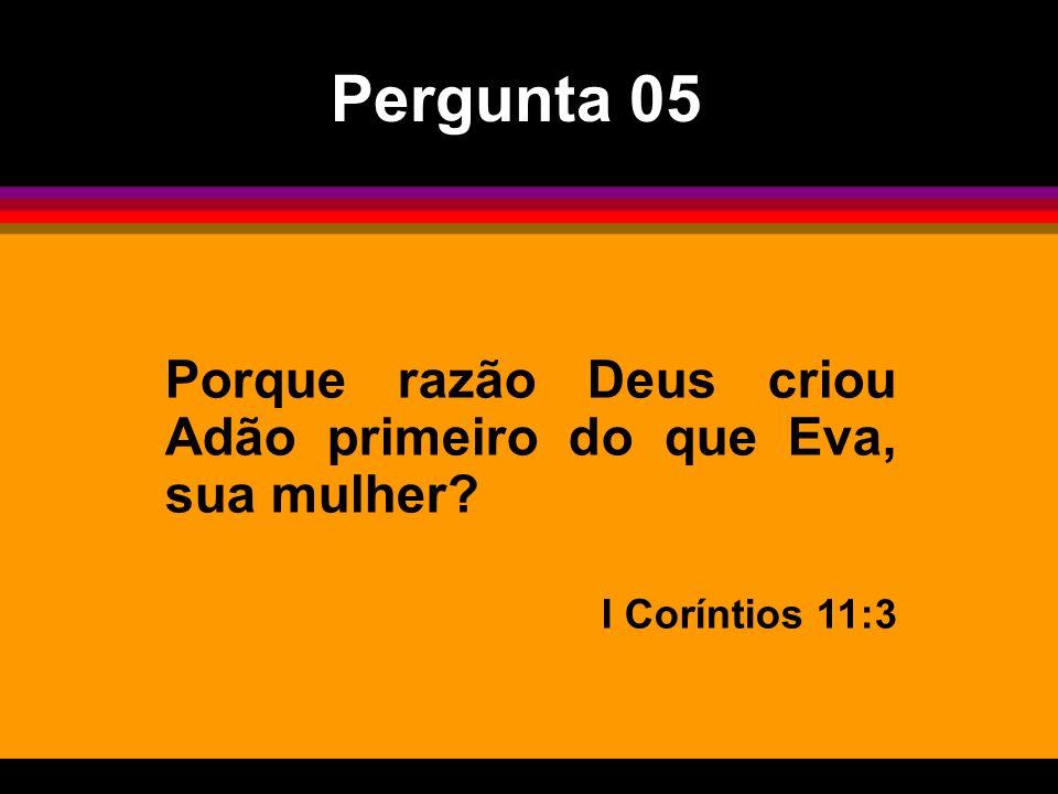 Pergunta 05 Porque razão Deus criou Adão primeiro do que Eva, sua mulher I Coríntios 11:3