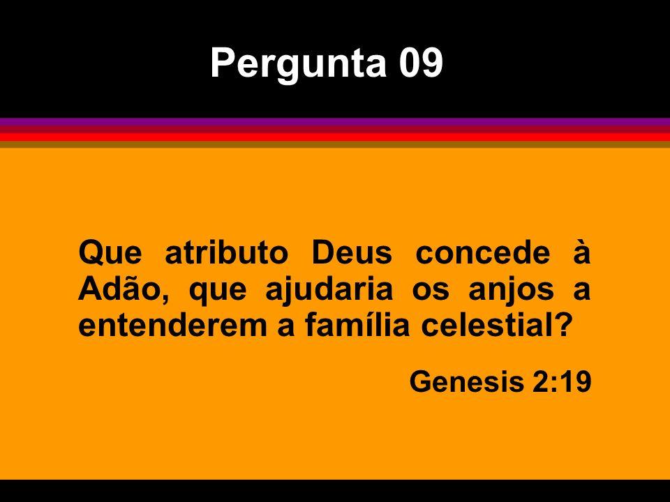 Pergunta 09 Que atributo Deus concede à Adão, que ajudaria os anjos a entenderem a família celestial