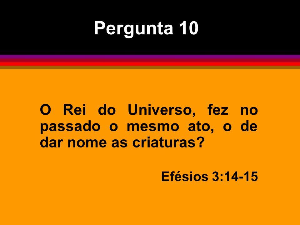 Pergunta 10 O Rei do Universo, fez no passado o mesmo ato, o de dar nome as criaturas.