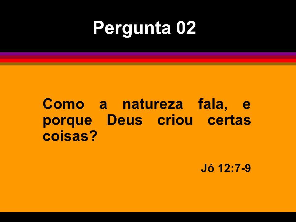 Pergunta 02 Como a natureza fala, e porque Deus criou certas coisas