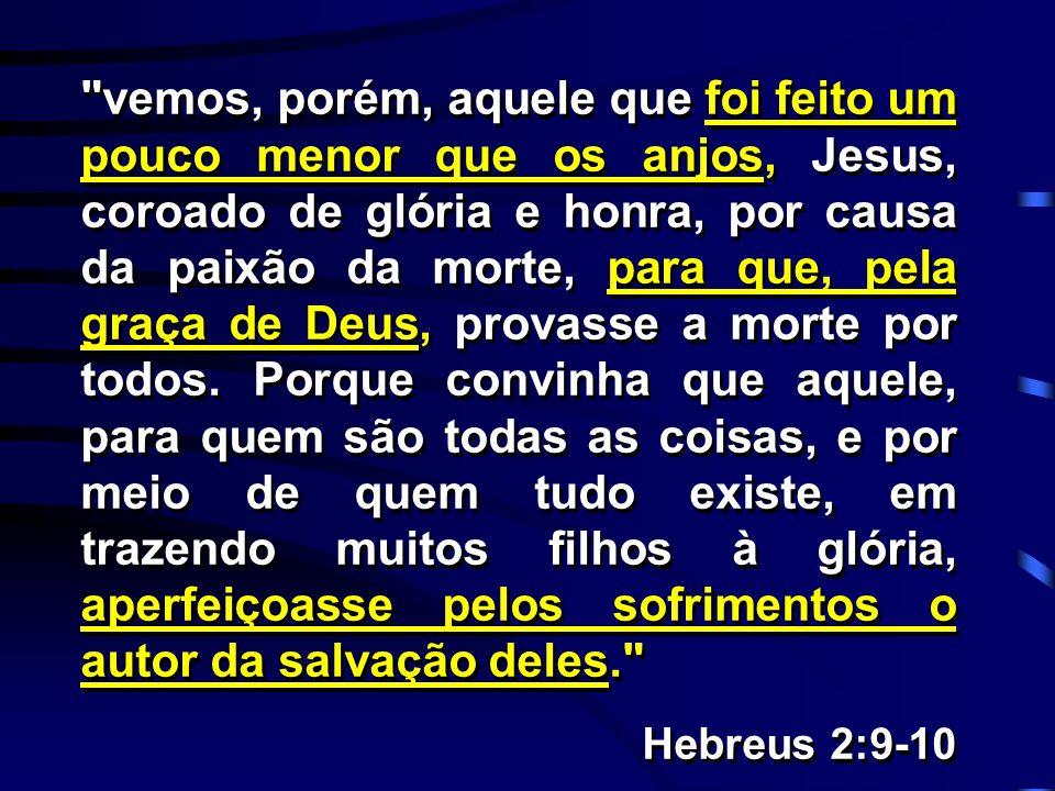 vemos, porém, aquele que foi feito um pouco menor que os anjos, Jesus, coroado de glória e honra, por causa da paixão da morte, para que, pela graça de Deus, provasse a morte por todos. Porque convinha que aquele, para quem são todas as coisas, e por meio de quem tudo existe, em trazendo muitos filhos à glória, aperfeiçoasse pelos sofrimentos o autor da salvação deles.