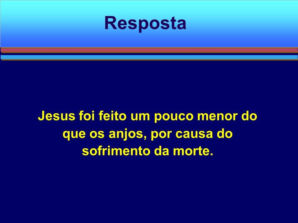 Resposta Jesus foi feito um pouco menor do que os anjos, por causa do sofrimento da morte.