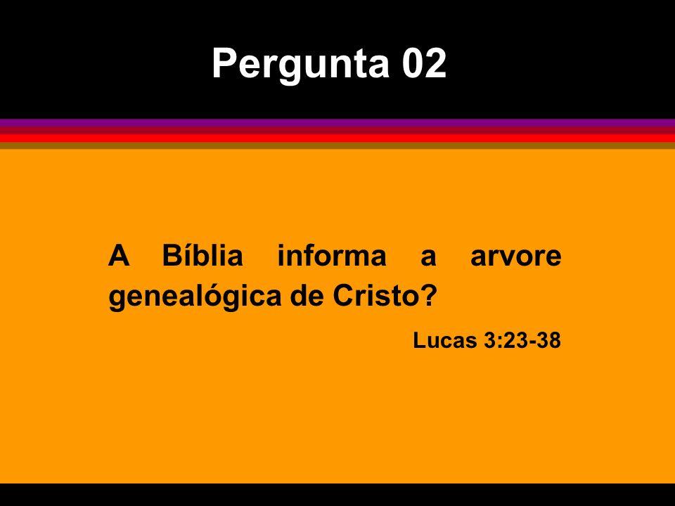 Pergunta 02 A Bíblia informa a arvore genealógica de Cristo