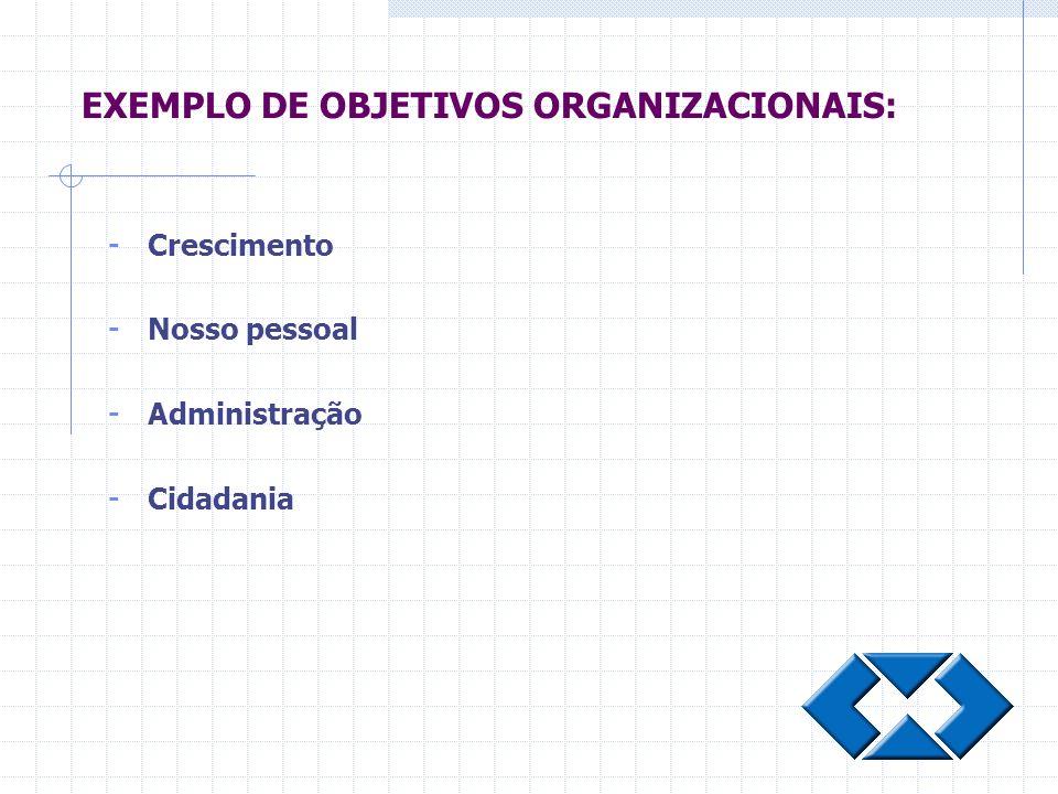 EXEMPLO DE OBJETIVOS ORGANIZACIONAIS: