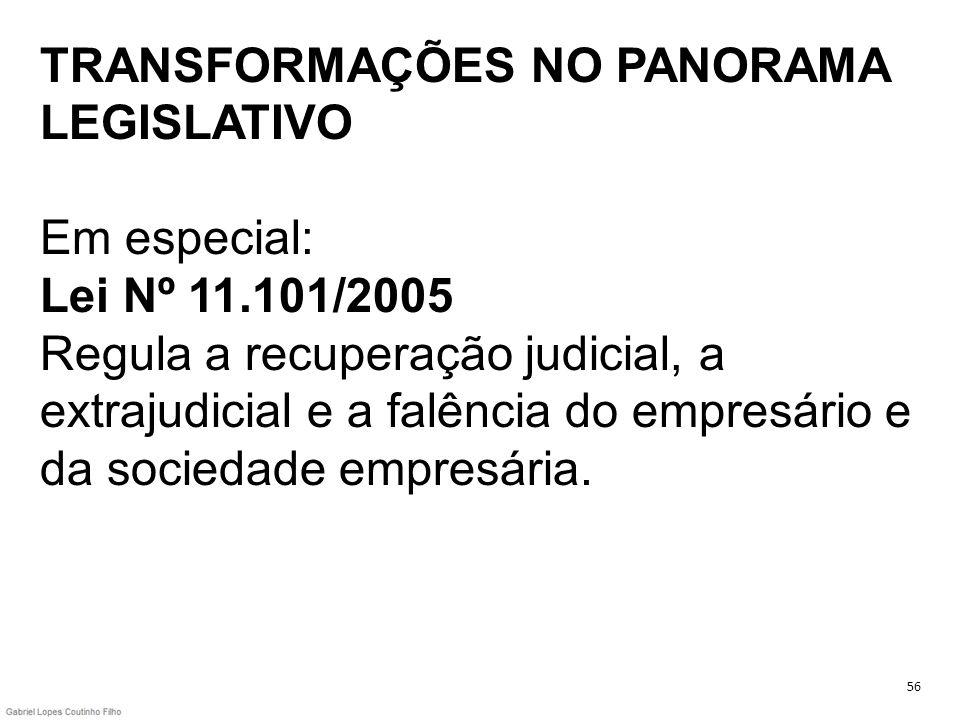 TRANSFORMAÇÕES NO PANORAMA LEGISLATIVO Em especial: Lei Nº 11