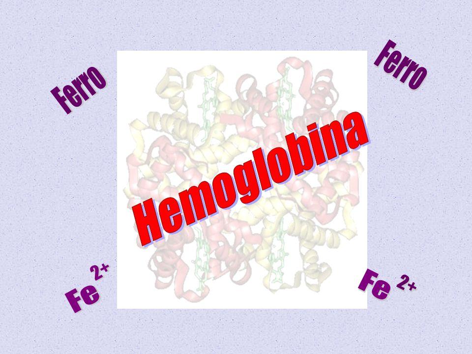 Ferro Ferro Hemoglobina Fe 2+ Fe 2+