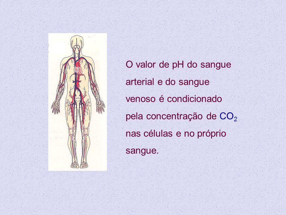 O valor de pH do sangue arterial e do sangue venoso é condicionado pela concentração de CO2 nas células e no próprio sangue.