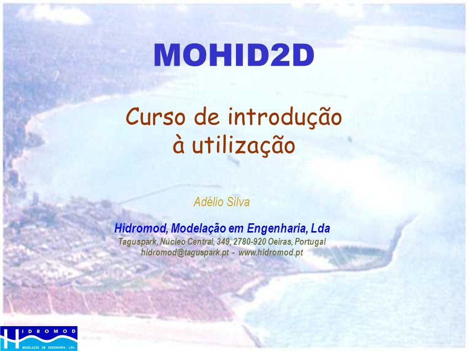 MOHID2D Curso de introdução à utilização
