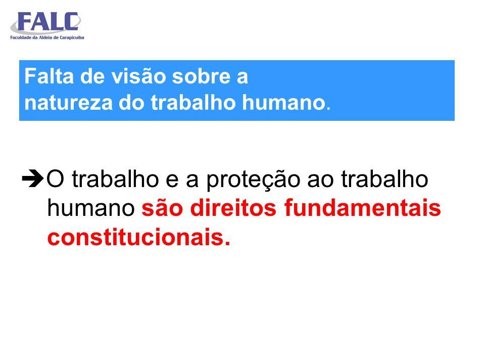 O trabalho e a proteção ao trabalho humano são direitos fundamentais constitucionais.