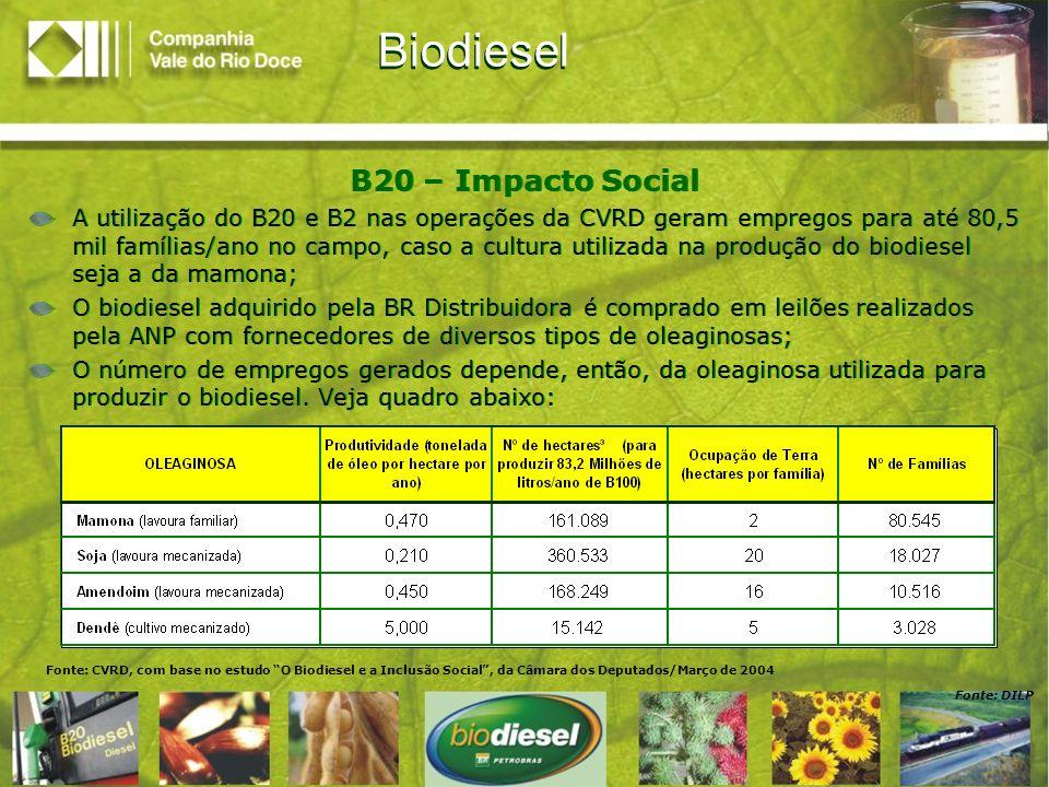 Biodiesel B20 – Impacto Social