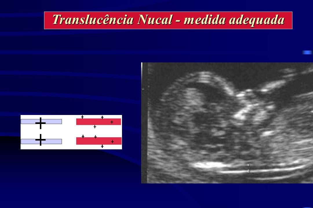 Translucência Nucal - medida adequada