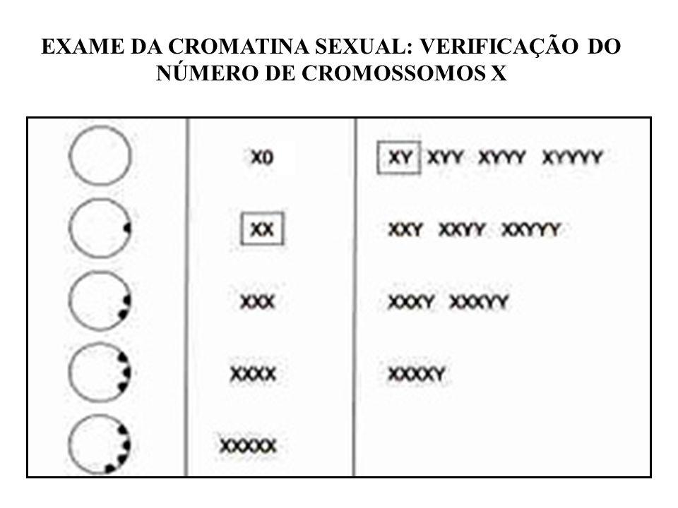 EXAME DA CROMATINA SEXUAL: VERIFICAÇÃO DO NÚMERO DE CROMOSSOMOS X
