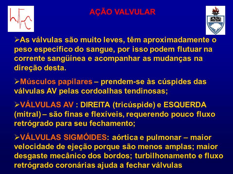 AÇÃO VALVULAR