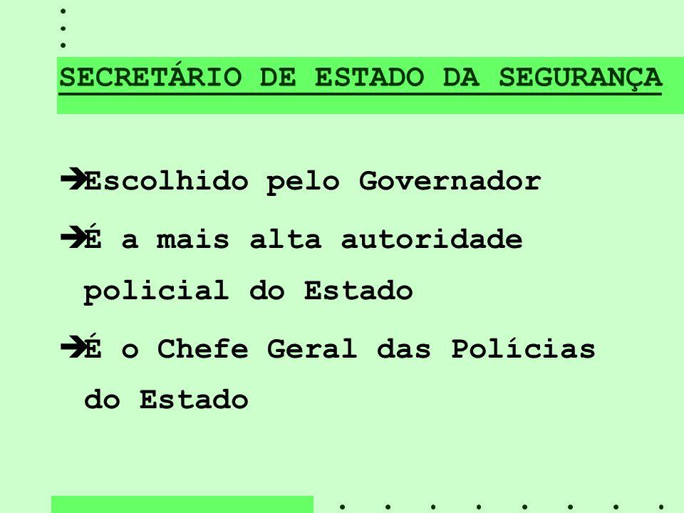 SECRETÁRIO DE ESTADO DA SEGURANÇA