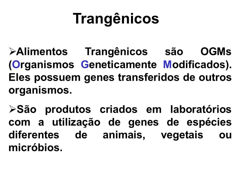 Trangênicos Alimentos Trangênicos são OGMs (Organismos Geneticamente Modificados). Eles possuem genes transferidos de outros organismos.