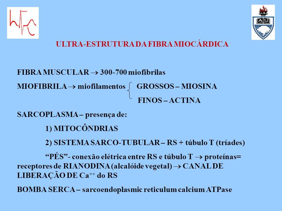 ULTRA-ESTRUTURA DA FIBRA MIOCÁRDICA