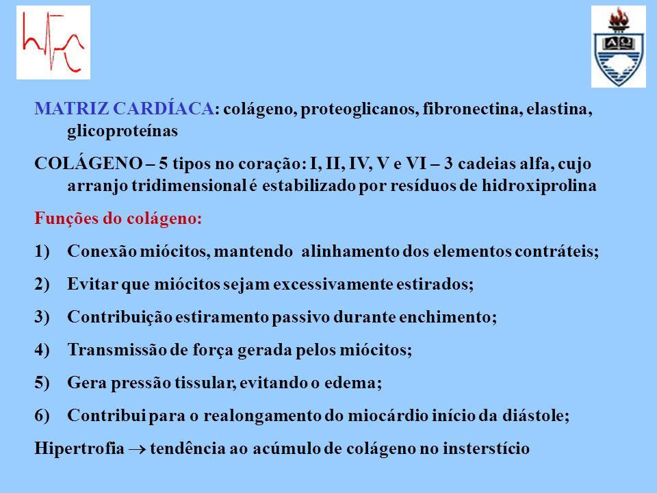MATRIZ CARDÍACA: colágeno, proteoglicanos, fibronectina, elastina, glicoproteínas