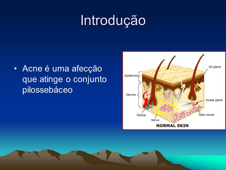 Introdução Acne é uma afecção que atinge o conjunto pilossebáceo