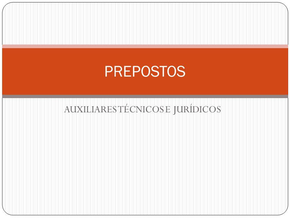 AUXILIARES TÉCNICOS E JURÍDICOS