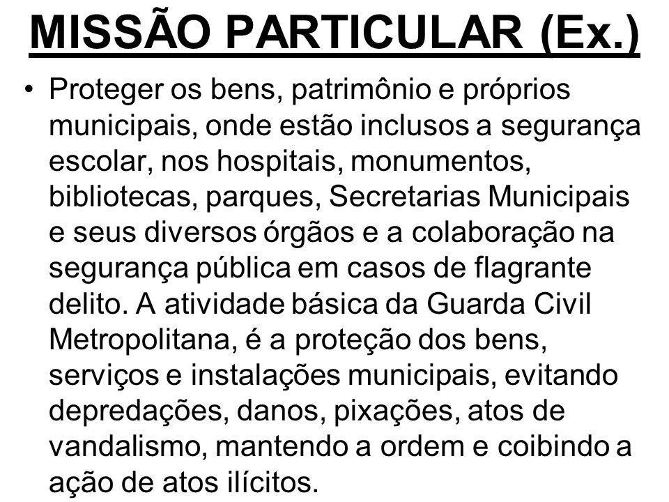MISSÃO PARTICULAR (Ex.)