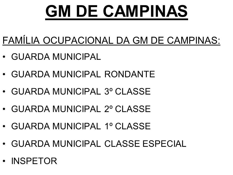 GM DE CAMPINAS FAMÍLIA OCUPACIONAL DA GM DE CAMPINAS: GUARDA MUNICIPAL
