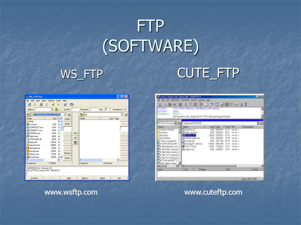 FTP (SOFTWARE) CUTE_FTP WS_FTP www.wsftp.com www.cuteftp.com