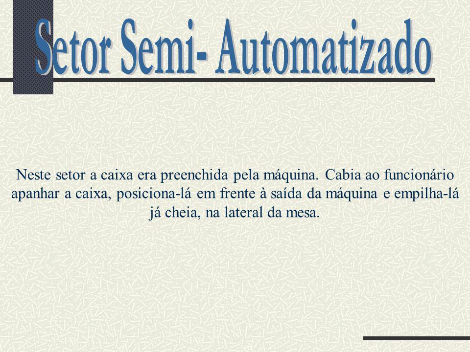 Setor Semi- Automatizado
