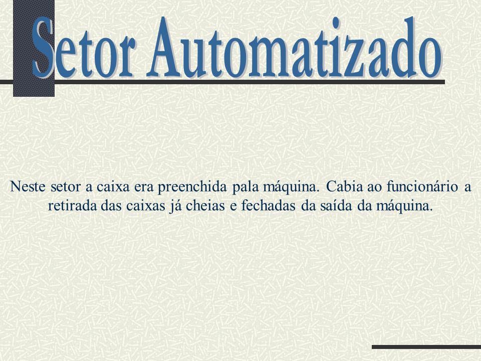 Setor Automatizado