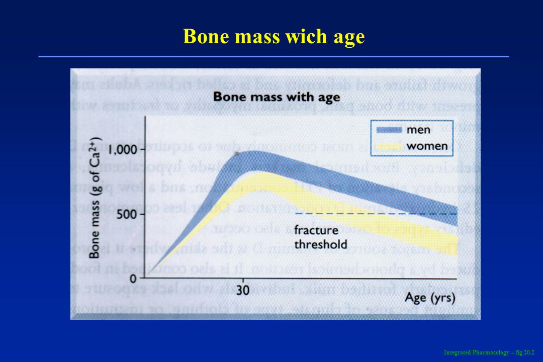 Bone mass wich age Integrated Pharmacology – fig 20.2