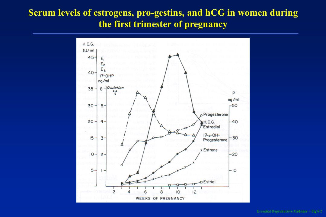 Serum levels of estrogens, pro-gestins, and hCG in women during the first trimester of pregnancy