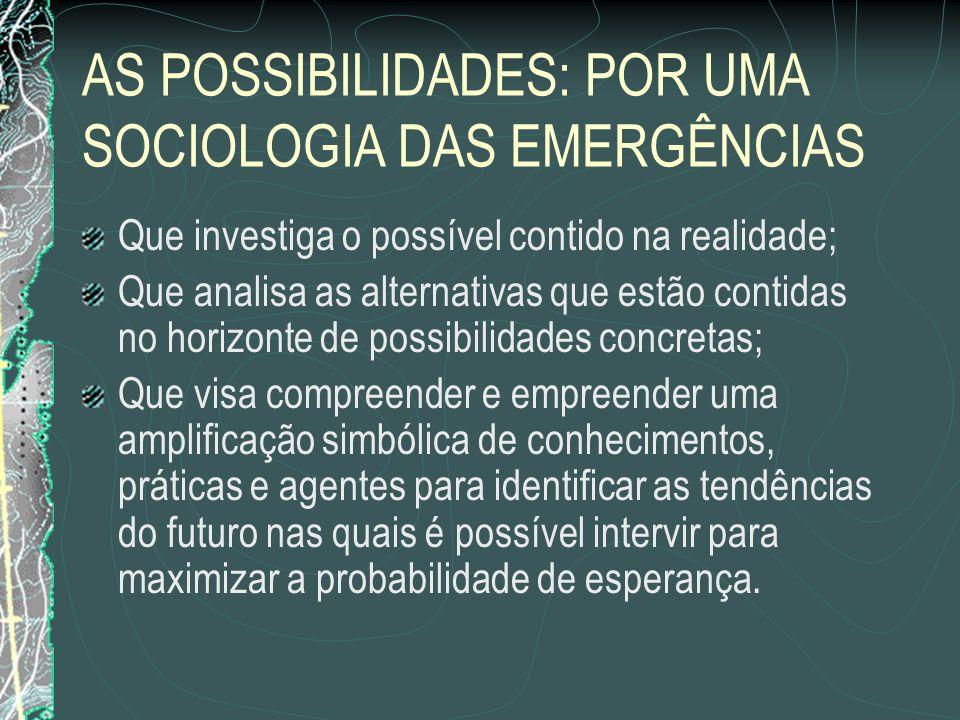 AS POSSIBILIDADES: POR UMA SOCIOLOGIA DAS EMERGÊNCIAS