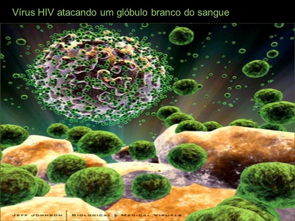 Vírus HIV atacando um glóbulo branco do sangue
