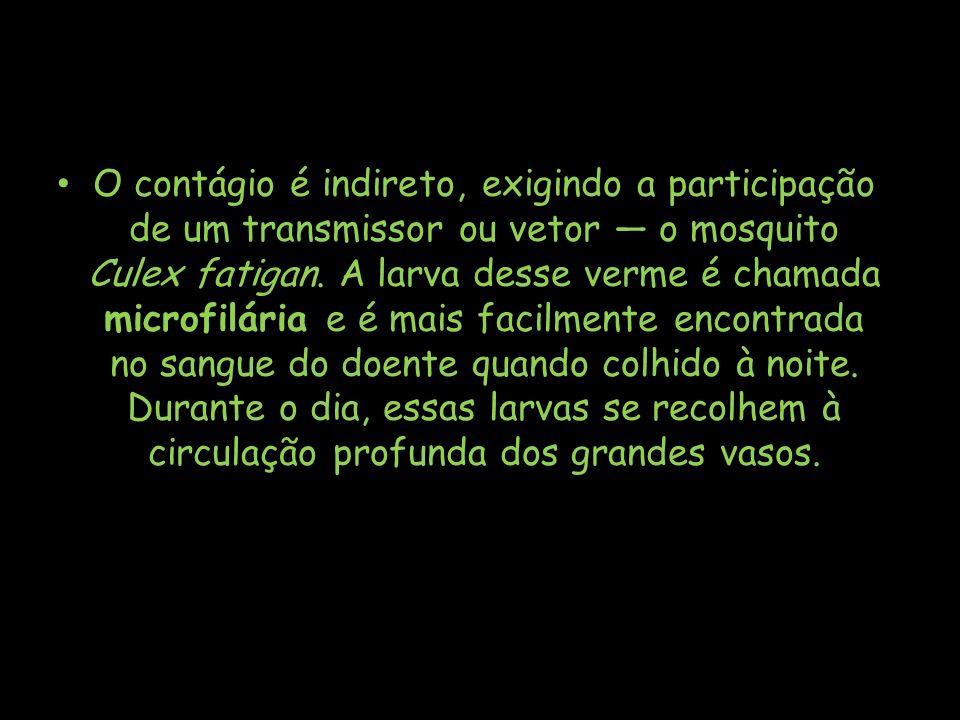 O contágio é indireto, exigindo a participação de um transmissor ou vetor — o mosquito Culex fatigan.