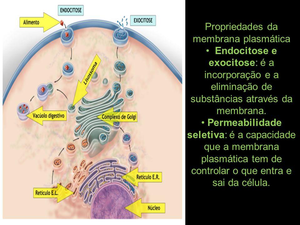 Propriedades da membrana plasmática