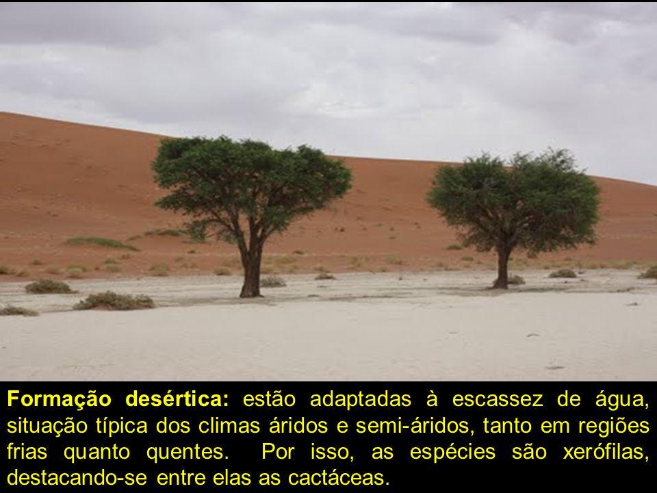 Formação desértica: estão adaptadas à escassez de água, situação típica dos climas áridos e semi-áridos, tanto em regiões frias quanto quentes.