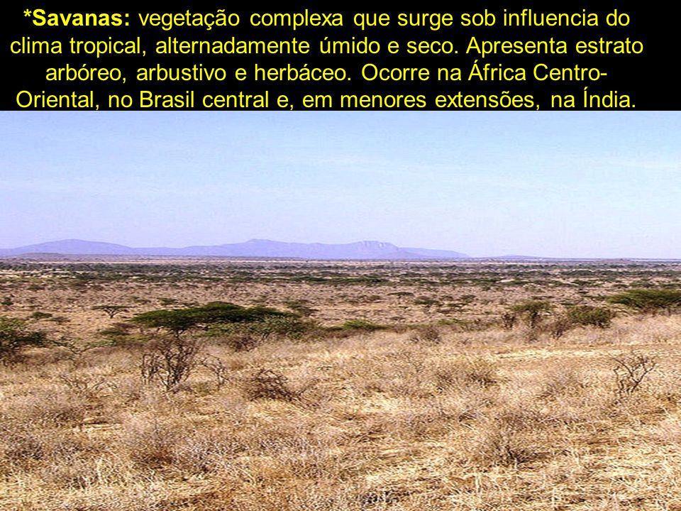 *Savanas: vegetação complexa que surge sob influencia do clima tropical, alternadamente úmido e seco.