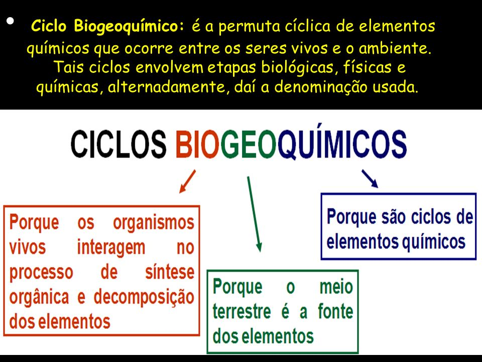 Ciclo Biogeoquímico: é a permuta cíclica de elementos químicos que ocorre entre os seres vivos e o ambiente.