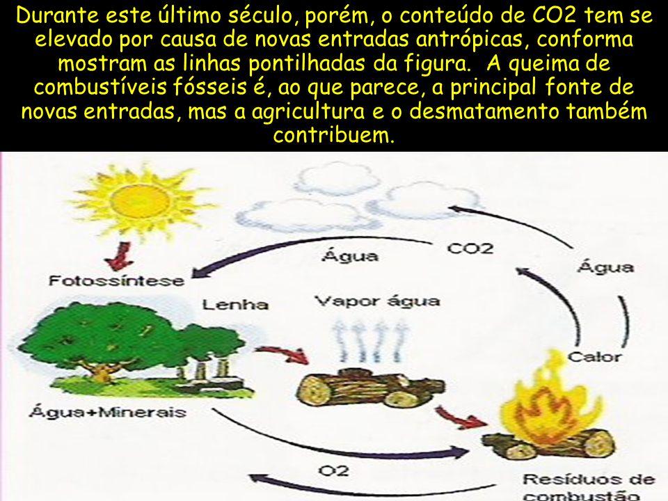 Durante este último século, porém, o conteúdo de CO2 tem se elevado por causa de novas entradas antrópicas, conforma mostram as linhas pontilhadas da figura.