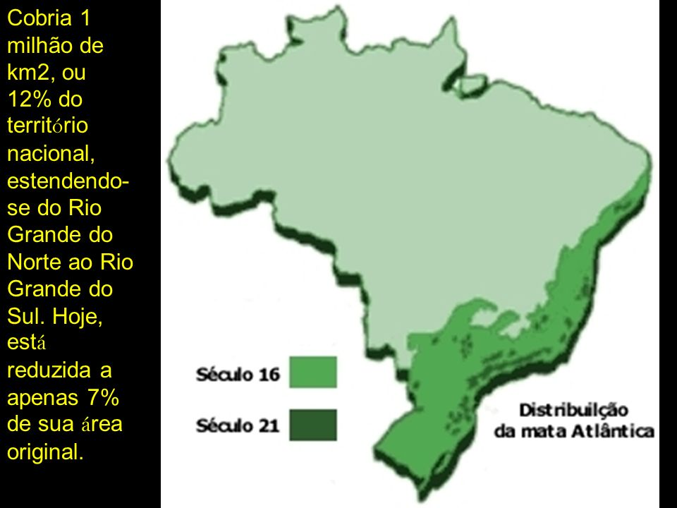 Cobria 1 milhão de km2, ou 12% do território nacional, estendendo-se do Rio Grande do Norte ao Rio Grande do Sul.